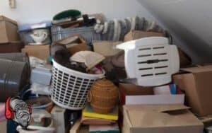 Hoarder Clean-out Lucie Bros